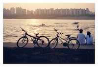A pair of bicycles next to the Han River in Seoul